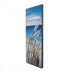 Framed 16 x 48 - 3D - Wild herbs on the beach