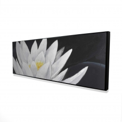 Framed 16 x 48 - 3D - Lotus flower with reflection