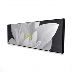 Framed 16 x 48 - 3D - Overhead view of a lotus flower