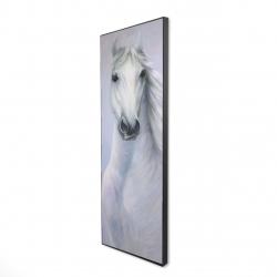 Framed 16 x 48 - 3D - Powerful white horse