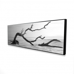 Framed 16 x 48 - 3D - Dead tree in the middle of water