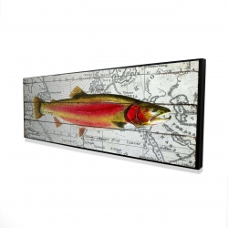 Framed 16 x 48 - 3D - Pink trout on a map
