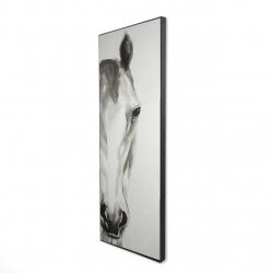 Framed 16 x 48 - 3D - Black & white horse face