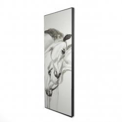 Framed 16 x 48 - 3D - Inseparables