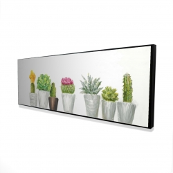 Framed 16 x 48 - 3D - Mini cactus and succulents