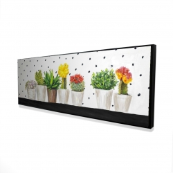 Framed 16 x 48 - 3D - Small cactus and succulents