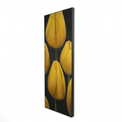 Framed 16 x 48 - 3D - Six daffodils flowers