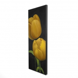 Framed 20 x 60 - 3D - Two daffodils flowers