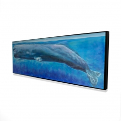 Framed 16 x 48 - 3D - Sperm whale