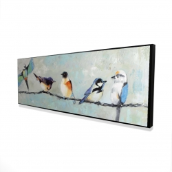 Framed 16 x 48 - 3D - Small colorful birds