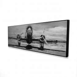 Framed 16 x 48 - 3D - Grayscale plane