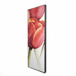 Framed 16 x 48 - 3D - Blossoming tulips closeup