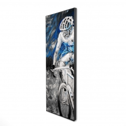 Framed 16 x 48 - 3D - Professional blue cyclist