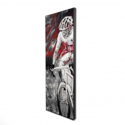 Framed 16 x 48 - 3D - Professional red cyclist