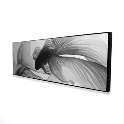 Framed 16 x 48 - 3D - Monochrome two betta
