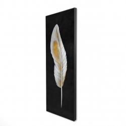 Framed 20 x 60 - 3D - Feather
