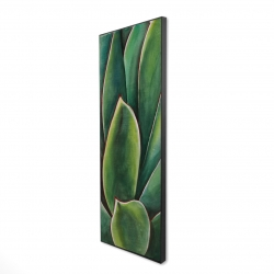Framed 16 x 48 - 3D - Watercolor agave plant