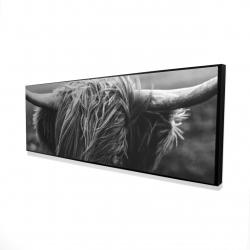 Framed 16 x 48 - 3D - Monochrome portrait highland cow