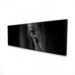 Framed 16 x 48 - 3D - Black horse