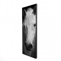 Framed 16 x 48 - 3D - Monochrome horse