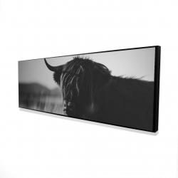 Framed 16 x 48 - 3D - Beautiful monochrome highland cow