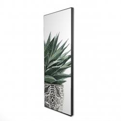 Framed 16 x 48 - 3D - Zebra plant succulent
