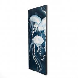 Framed 16 x 48 - 3D - Medusa