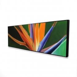 Framed 16 x 48 - 3D - Bird of paradise flower