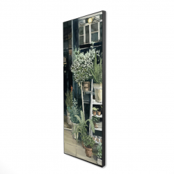 Framed 16 x 48 - 3D - Plants shop