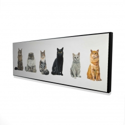 Framed 16 x 48 - 3D - Six cats lined up