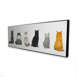 Framed 20 x 60 - 3D - Six cats lined up back view