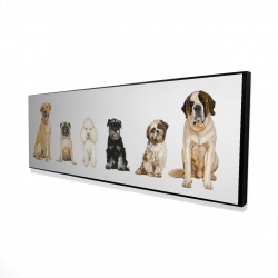 Framed 16 x 48 - 3D - Man's best friend