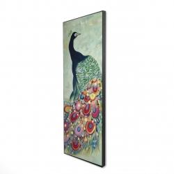 Framed 16 x 48 - 3D - Proud as a peacock