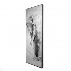 Framed 16 x 48 - 3D - Great elephant