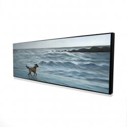 Framed 16 x 48 - 3D - Dog on the beach
