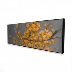 Framed 16 x 48 - 3D - Golden wattle plant with pugg ball flowers
