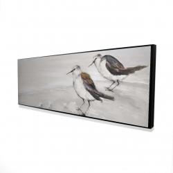 Framed 16 x 48 - 3D - Two sandpipiers birds