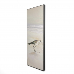 Framed 16 x 48 - 3D - Semipalmated sandpiper on the beach
