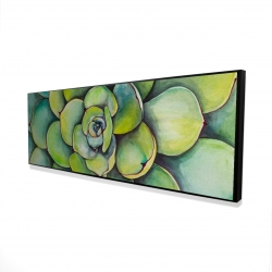 Framed 16 x 48 - 3D - Watercolor succulent plant