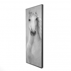 Framed 16 x 48 - 3D - Monochrome mighty white horse