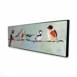 Framed 16 x 48 - 3D - Small abstract colorful birds