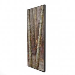 Framed 16 x 48 - 3D - Forest