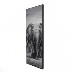 Encadré 16 x 48 - 3D - Troupeau d'éléphants
