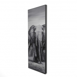 Framed 16 x 48 - 3D - Herd of elephants