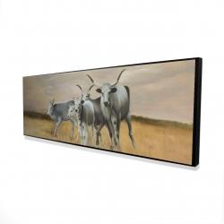 Framed 16 x 48 - 3D - Nguni breeding