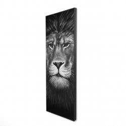 Framed 16 x 48 - 3D - Lion portrait