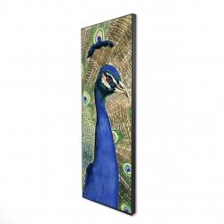 Framed 16 x 48 - 3D - Peacock