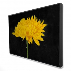 Framed 24 x 36 - 3D - Chrysanthemum