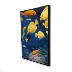 Framed 24 x 36 - 3D - Fish under the sea
