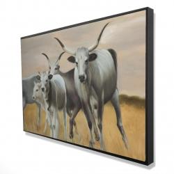 Framed 24 x 36 - 3D - Nguni breeding